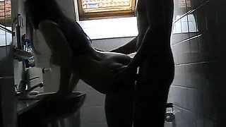 adult free cams
