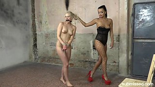 Tied Daphne Klyde is ready for the lesbian BDSM and sex toys